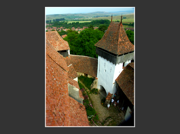 The fortified church Viscri